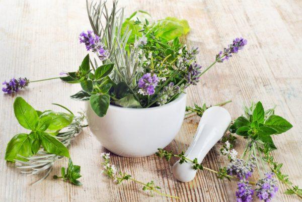 Pflanzliche Gesichts Reinigung: Herbal Energy von Erborian